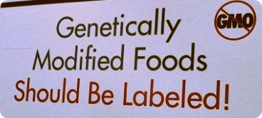 gmo-label-gmo-foods-620x250