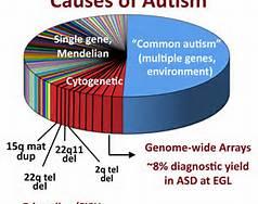 autismgene
