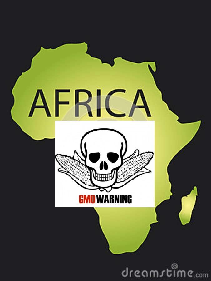 africa-gmo-warning