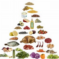 nutrition images