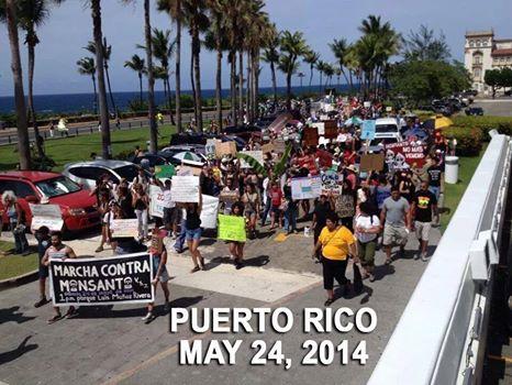 Monsanto Protest Puerto Rico