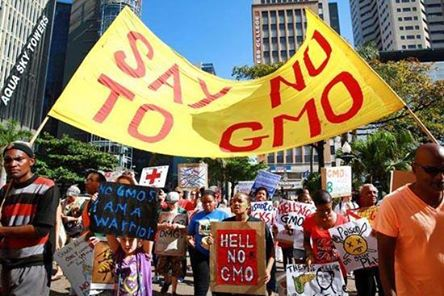 Monsanto Protesters in South Africa Durban