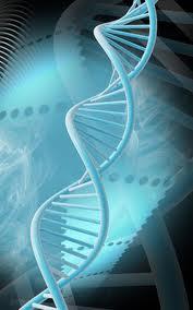 gene variant