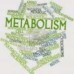 metabolic health